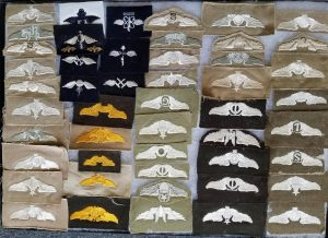 WWII US Army Air Force Cloth Wings